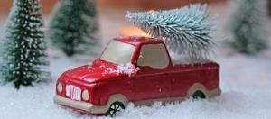 Weihnachtsbaumschlagen @ Hennigsdorf